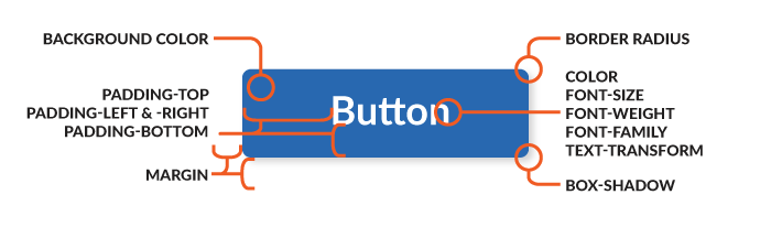 Anatomy of a Button